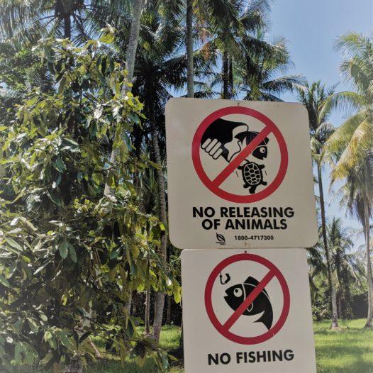 Auch auf Pulau Ubin begegnet man ihnen ständig: den Verbotsschildern.